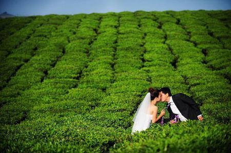 Vietnam wedding photography with beautiful places for photo